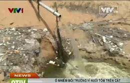 Ô nhiễm môi trường do nuôi tôm trên cát