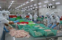Mỹ tăng thuế chống bán phá giá cá tra gấp 3 lần