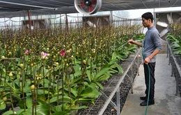DN đầu tư nông nghiệp công nghệ cao sẽ được vay lãi suất 7-10,5%/năm