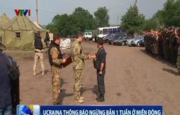 Ukraine thông báo ngừng bắn một tuần ở miền Đông