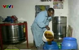Ethiopia khuyến khích nông dân tăng cường nuôi ong