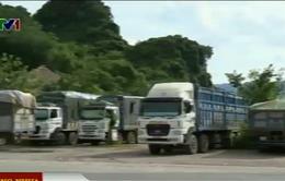 Hòa Bình: Hàng chục xe quá tải trực chờ trốn cân tải trọng