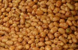 Khoai tây Trung Quốc tiếp tục giả dạng khoai tây Đà Lạt