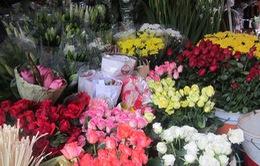 Rằm tháng 7: Giá hoa tươi tăng 20 – 50%