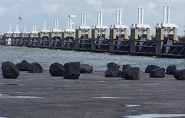 Indonesia khởi công dự án thế kỷ xây đập chắn nước vào tháng 9