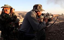 Mỹ trực tiếp cấp vũ khí cho người Kurd ở Iraq