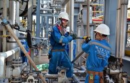 Chủ động nhân lực trong công nghiệp lọc hóa dầu