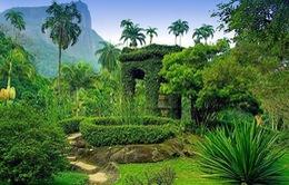 """Sửng sốt với """"vườn địa đàng"""" trên mặt đất"""