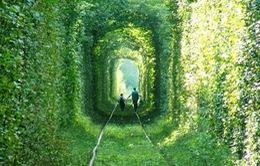 """Tản bước trong """"đường hầm tình yêu"""" ở Ukraine"""