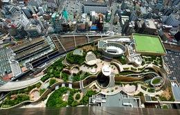 Công viên trên... nóc nhà siêu kinh ngạc ở Nhật Bản