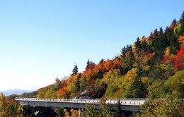 Cảnh sắc tuyệt đẹp trên cầu Linn Cove Viaduct