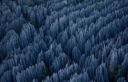 Chiêm ngưỡng rừng đá nhọn hoắt kỳ vĩ ở Madagascar