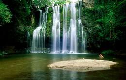 Khám phá thiên nhiên trù phú ở Costa Rica