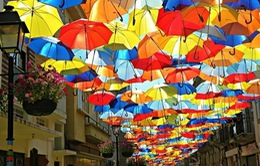 """Tràn ngập sắc màu trên """"phố ô"""" ở Bồ Đào Nha"""