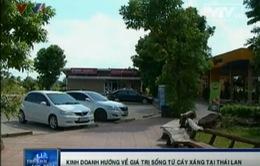 """Xanh ngát """"công viên cây xăng"""" ở Thái Lan"""