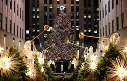 Chiêm ngưỡng cây thông Noel rực rỡ ánh đèn ở New York