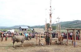 Tây Nguyên - Vùng đất của những lễ hội độc đáo