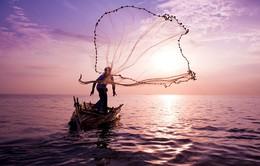 Ngắm những tuyệt phẩm của cuộc thi Nhiếp ảnh quốc tế Hamdan 2013