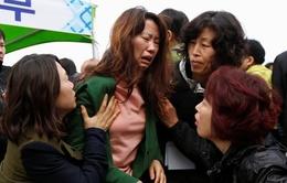 Chìm phà Sewol: Khủng hoảng tâm lý bao giờ nguôi?