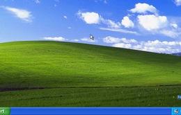 Windows là sự lựa chọn hàng đầu