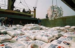Hoàn thành mua tạm trữ 1 triệu tấn gạo