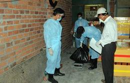 Ninh Thuận công bố dịch cúm H5N1 trên chim yến
