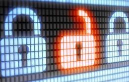 Gần 25% máy tính trên toàn cầu không được bảo vệ
