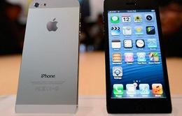 iPhone 5S: Tất cả những gì bạn muốn biết