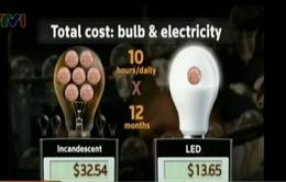 VIDEO: Đèn LED lên ngôi