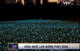 VIDEO: Con đường tự phát sáng trong đêm