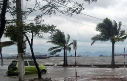 LHQ đánh giá cao công tác chuẩn bị ứng phó với bão Haiyan của Việt Nam
