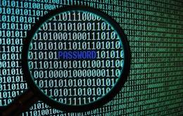 FBI: Bùng nổ đánh cắp thông tin tài khoản năm 2014