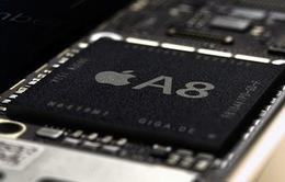 Samsung có thể không sản xuất chip A8 cho Apple