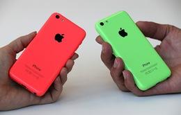 """Apple sẽ """"khai tử"""" iPhone 5C để """"dọn đường"""" cho iPhone 6"""