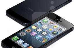 Phiên bản iPhone nào đang được dùng nhiều nhất?