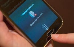 Smarphone mở khóa bằng vân tay: Chọn thiết bị nào?