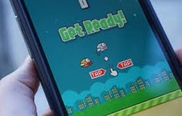 Tác giả Flappy Bird – Điển hình của tinh thần trách nhiệm
