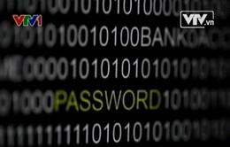 Lỗ hổng bảo mật đe dọa thanh toán trực tuyến toàn cầu