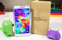 1/3 người dùng iPhone nâng cấp lên Galaxy S5