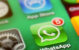 WhatsApp vượt mốc 500 triệu người dùng