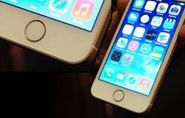 Ai nói iPhone đã hết thời?