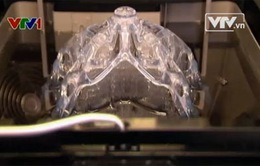 Đột phá trong ngành giải phẫu với in 3D và tế bào gốc