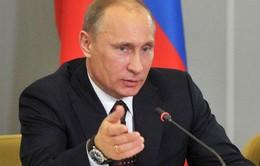 Tổng thống Nga tham dự diễn đàn kinh tế St Peterburg 2014
