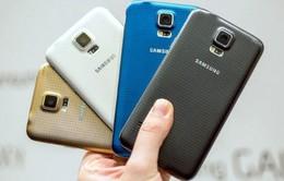 Samsung cắt giảm Galaxy S5 vì ngại iPhone 6?
