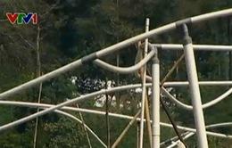 Indonesia chiết xuất khí đốt từ rác thải