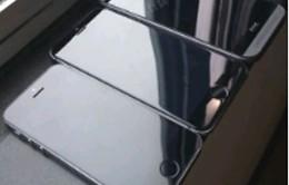 Chỉ iPhone 5,5 inch được trang bị màn hình sapphire
