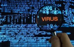Gia tăng tình trạng phát tán mã độc trên Internet