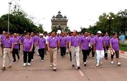 Lào kỷ niệm 17 năm gia nhập ASEAN