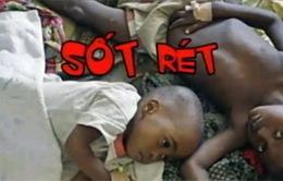 Dịch bệnh - Cú đòn đau đánh vào nền kinh tế châu Phi