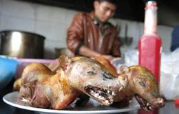 """Nạn """"xẻ thịt"""" thú rừng ở chùa Hương: Đã tìm ra giải pháp?"""